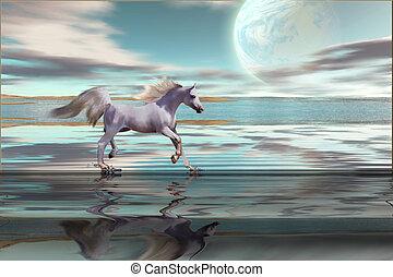 DESTINY - A white Arabian stallion gallops across the...