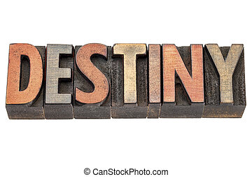 destiny word in vintage wood type