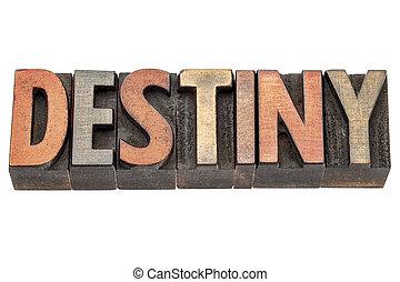 destiny word in vintage wood type