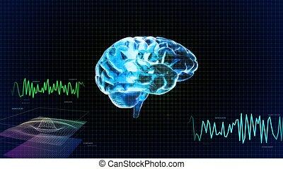 destra, cristallo, grafico, onda, cervello, lato