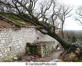 destruído, lares, tempestade, durante