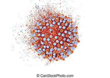 Destruction of hepatitis C virus