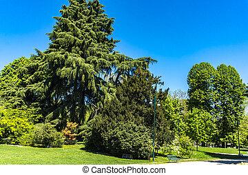 Sempione park in Milan, Italy