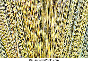 detail of a broom texture