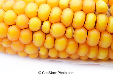 detail of a corn