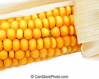 detail of a corn