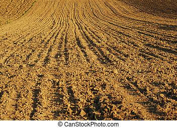 farmland - detail of a farmland earth