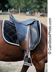Detail of a horse saddle