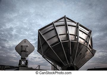 antennae - detail of a huge antennae