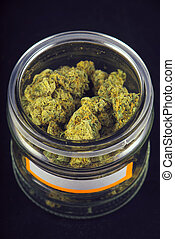 Detail of cannabis buds (grape god strain) on a glass jar isolated over black background
