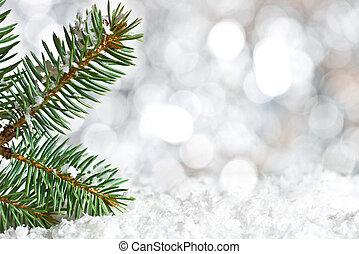 Christmas twig on the snow