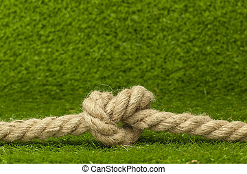 knot on rope over green grass