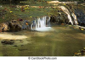 detail of mountain stream in autumn