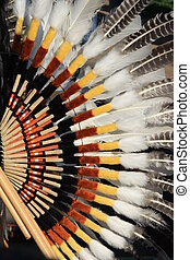Detail of Native South American costume - Condor wing