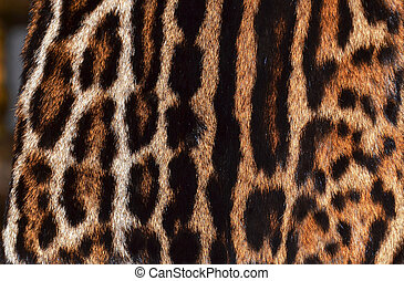 detail of ocelot fur coat texture