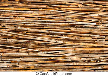 Detail of reed fence