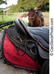 Detail of saddle