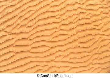 Detail of sand dune texture