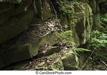 detail of sandstone rocks