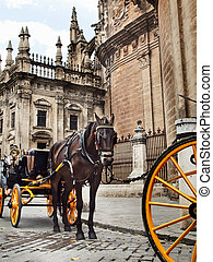 Detail of Seville Cathedral with carriage horse, Andalusia, Spa