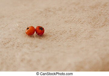 detail of small orange mini tomatoes