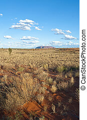 Australian Outback, Northern Territory, Australia - Detail ...