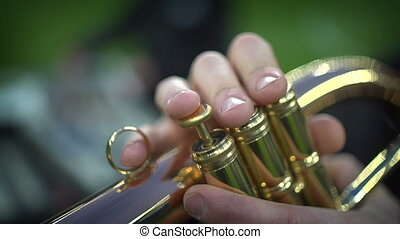 Detail of the player's fingers on trumpet. Pipes in the...