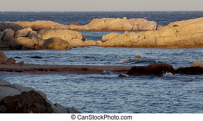 Detail of the Spanish coast at summer (Catalonia,Costa...