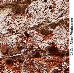 detail of the wall of red bricks covered with salt caused by humidity in the house near the sea