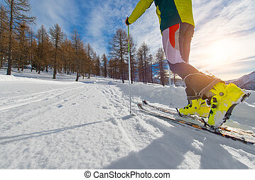 Detail of uphill ski touring
