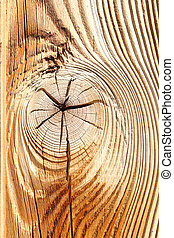 detail of wooden knot on spruce plank