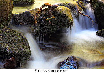 detail on a mountain stream