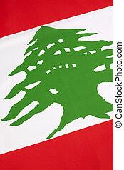 Detail on the flag of Lebanon
