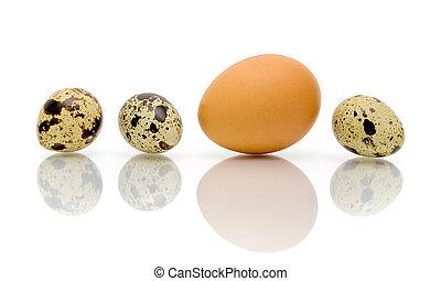 detail, vejce, tisk, neobvyklý