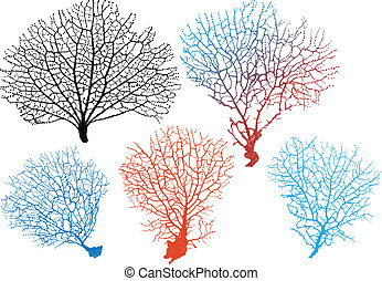 detailed black sea fan corals, vector set