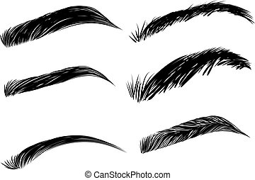 Detailed eyebrows set - Collection of black detailed...