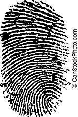 detailed finger print - vector illustration