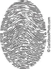 Detailed Forensic Fingerprint Vector