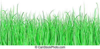 Detailed grass - each blade of grass has been drawn individually