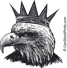 Detailed hand drawn eagle