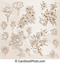 Detailed Hand Drawn Flowers - for scrapbook and design in vector