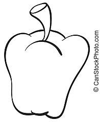 capsicum - detailed illustration of a capsicum on white...