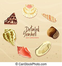 Detailed Seashell Collection