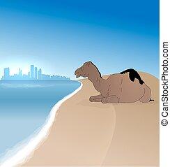 Detailed vector Abu Dhabi silhouette skyline