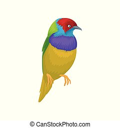 Detailed vector portrait of gouldian finch. Exotic bird with...