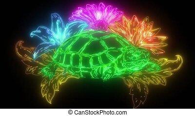 Detailed  illustration of a generic tortoise land turtle in subtle greens.