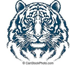 detailní, tygr bránit, vektor