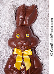 Details of a Big Chocolate Bunny