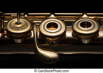 Details of a golden flute black background