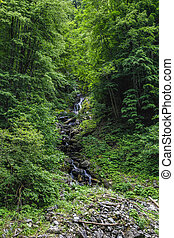 Details of a hidden waterfall in Carpathian Mountains forest